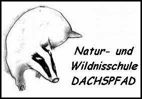 Wildnisschule Dachspfad